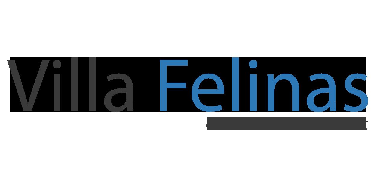 Villa Felinas